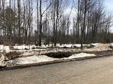 Terrain à vendre à Hérouxville, Mauricie, Chemin du Tour-du-Lac, 27004659 - Centris.ca