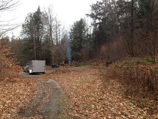 Land for sale in Bowman, Outaouais, Rang 5, 23209178 - Centris.ca