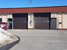 Industrial unit for rent in Saint-Vincent-de-Paul (Laval), Laval, 1339 - 1341, Rue  Tellier, 9692460 - Centris.ca
