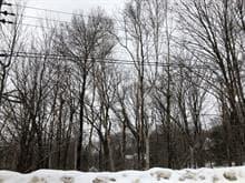 Terrain à vendre à Saint-Donat (Lanaudière), Lanaudière, 86, Chemin du Domaine-de-l'Escapade, 16754477 - Centris.ca