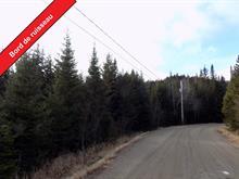 Terrain à vendre à Lantier, Laurentides, Chemin de la Rivière, 28376871 - Centris.ca