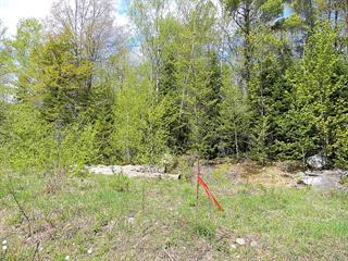 Lot for sale in Sainte-Anne-des-Lacs, Laurentides, Chemin des Pensées, 13866570 - Centris.ca