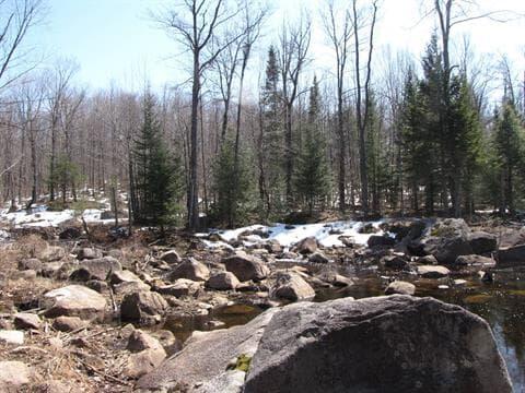 Terre à vendre à Brownsburg-Chatham, Laurentides, Chemin de la Carrière, 13758671 - Centris.ca