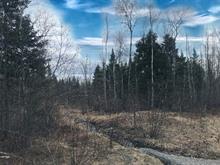 Land for sale in Rock Forest/Saint-Élie/Deauville (Sherbrooke), Estrie, Rue du Griffon, 18226309 - Centris.ca