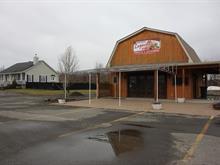 Fermette à vendre à Sainte-Anne-des-Plaines, Laurentides, 537, 5e Avenue, 25256179 - Centris.ca