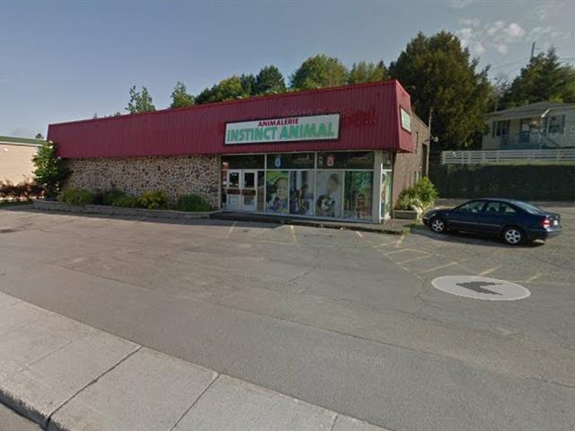 Bâtisse commerciale à vendre à Sainte-Agathe-des-Monts, Laurentides, 240, Rue  Principale Est, 20782669 - Centris.ca