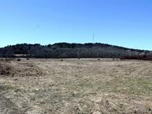 Hobby farm for sale in Gracefield, Outaouais, 1084 - 1086, Route  105, 28107771 - Centris.ca