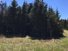 Terrain à vendre à Les Îles-de-la-Madeleine, Gaspésie/Îles-de-la-Madeleine, Chemin  Odiphas-Harvie, 12823401 - Centris.ca