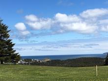 Terrain à vendre à Les Îles-de-la-Madeleine, Gaspésie/Îles-de-la-Madeleine, Chemin  Odiphas-Harvie, 11309499 - Centris.ca