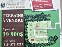 Terrain à vendre à Cleveland, Estrie, 8, Rue du Boisé, 28492812 - Centris.ca