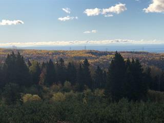 Terrain à vendre à Saint-Ferréol-les-Neiges, Capitale-Nationale, Avenue  Royale, 14489725 - Centris.ca