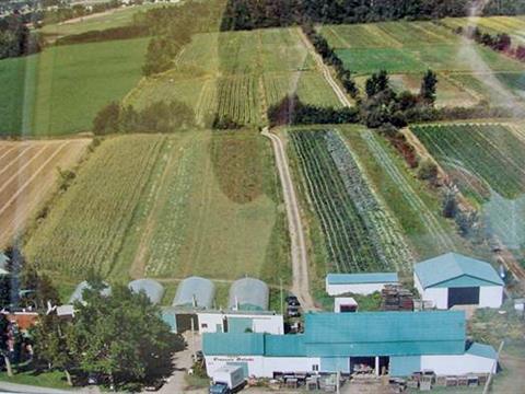 Farm for sale in Saint-Mathieu, Montérégie, 569, Chemin de la Petite-Côte, 11281441 - Centris.ca