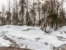 Lot for sale in Shannon, Capitale-Nationale, Rue  Hillside, 18820162 - Centris.ca