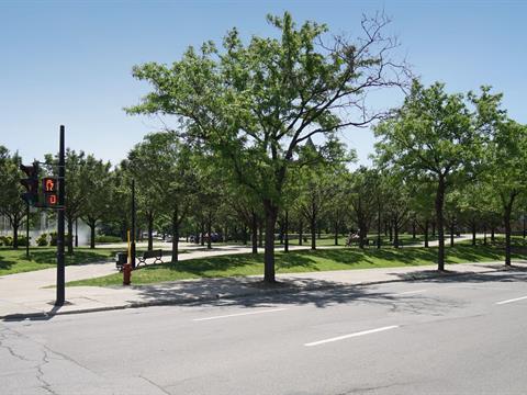 Condo / Appartement à louer à Ville-Marie (Montréal), Montréal (Île), 869, Avenue  Viger Est, app. 101, 11034242 - Centris