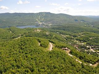 Lot for sale in Mont-Tremblant, Laurentides, Chemin de l'Érablière, 11094025 - Centris.ca
