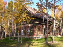 Chalet à vendre à Ferme-Neuve, Laurentides, 12, Chemin de la Berge, 24689071 - Centris.ca