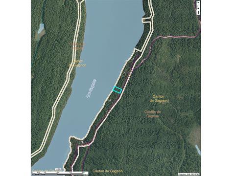 Terrain à vendre à Duhamel, Outaouais, Chemin du Lac-Gagnon Est, 13319270 - Centris.ca