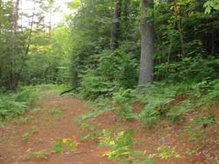 Land for sale in Chénéville, Outaouais, Chemin de la Belle-Vallée, 22702616 - Centris.ca