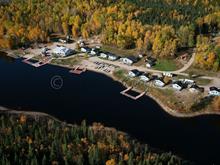 Commerce à vendre à Senneterre - Ville, Abitibi-Témiscamingue, 2700, Chemin  Pourvoirie-Berthelot, 24748500 - Centris.ca