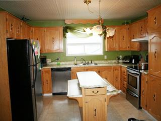 House for sale in Chibougamau, Nord-du-Québec, 116, Chemin  Merrill, 16468624 - Centris.ca