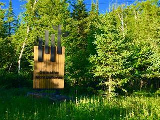 Terrain à vendre à Mont-Tremblant, Laurentides, Allée des Perséides, 20461476 - Centris.ca