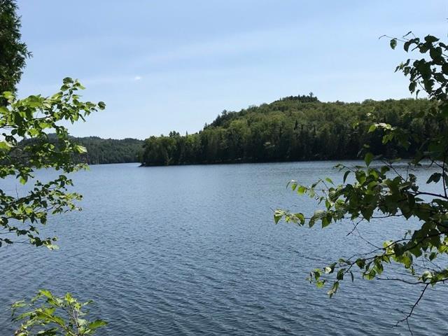 Terrain à vendre à La Macaza, Laurentides, Chemin du Lac-Mitchell, 28385204 - Centris.ca