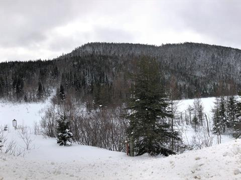 Terre à vendre à Saint-Félix-d'Otis, Saguenay/Lac-Saint-Jean, Rue  Principale, 21686943 - Centris
