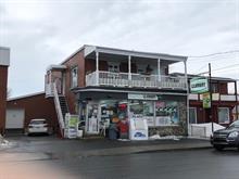 Duplex for sale in Victoriaville, Centre-du-Québec, 16B - 16C, Rue de l'Aqueduc, 25721874 - Centris.ca