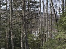 Terrain à vendre à Notre-Dame-de-la-Merci, Lanaudière, Chemin  Saint-Guillaume, 19703243 - Centris.ca