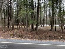 Lot for sale in Saint-Bernard-de-Lacolle, Montérégie, 128, Montée  Richard, 25431353 - Centris.ca