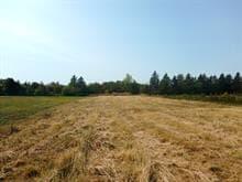 Terrain à vendre à Trois-Pistoles, Bas-Saint-Laurent, Route de Fatima, 13539542 - Centris.ca