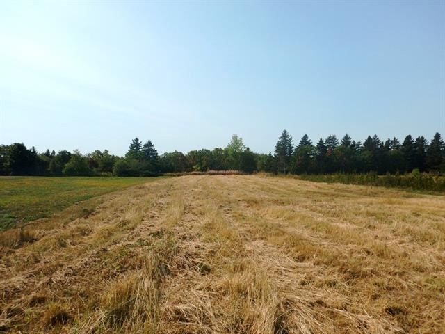 Lot for sale in Trois-Pistoles, Bas-Saint-Laurent, Route de Fatima, 13539542 - Centris.ca
