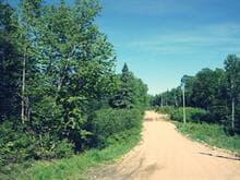 Terrain à vendre à Alleyn-et-Cawood, Outaouais, Chemin  Beauregard, 13210081 - Centris.ca