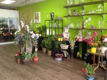 Commerce à vendre à Brossard, Montérégie, 7529, boulevard  Taschereau, 23366564 - Centris.ca