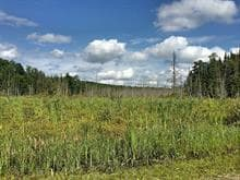 Lot for sale in Clarendon, Outaouais, 9e Concession, 13176657 - Centris.ca