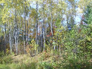 Lot for sale in Mont-Saint-Michel, Laurentides, Chemin du Tour-du-Lac-Gravel, 23556115 - Centris.ca