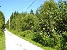 Terrain à vendre à Beaulac-Garthby, Chaudière-Appalaches, Chemin  Aylmer, 13973829 - Centris.ca