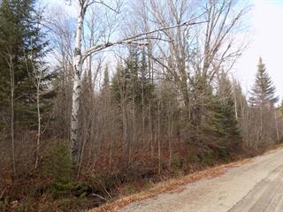 Terrain à vendre à Lantier, Laurentides, Chemin de la Rivière, 9040031 - Centris.ca