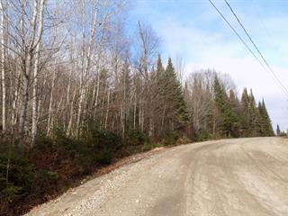 Terrain à vendre à Lantier, Laurentides, Chemin de la Rivière, 19179076 - Centris.ca