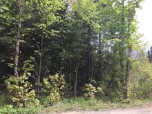 Terrain à vendre à Sainte-Agathe-des-Monts, Laurentides, Chemin  Durocher, 19814103 - Centris.ca