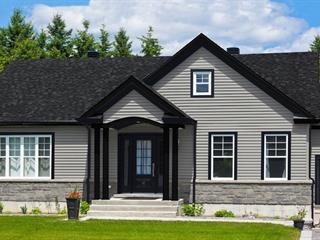House for sale in Saint-Benjamin, Chaudière-Appalaches, Rang  Watford, 27195115 - Centris.ca