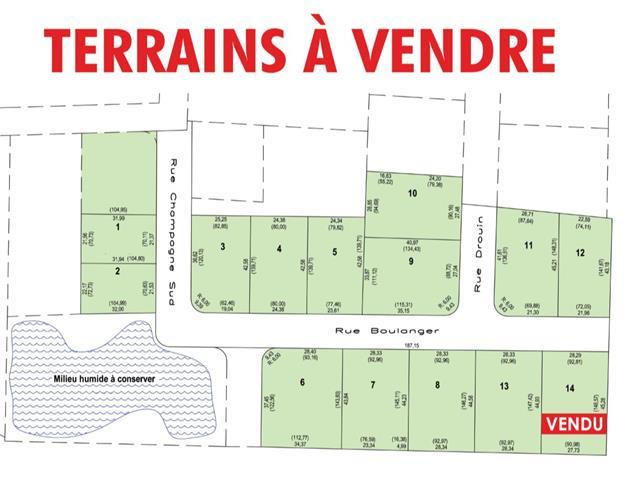 Lot for sale in Saint-Honoré-de-Shenley, Chaudière-Appalaches, Rue  Drouin, 9156551 - Centris.ca
