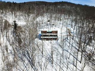 House for sale in Mont-Tremblant, Laurentides, 615, Chemin  Duplessis, 9287608 - Centris.ca