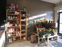 Commerce à vendre à Vimont (Laval), Laval, 2153, boulevard des Laurentides, 20055633 - Centris.ca