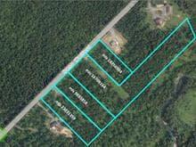 Terrain à vendre à Saint-Benjamin, Chaudière-Appalaches, 10, Rang  Watford, 16709164 - Centris.ca