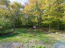 Terre à vendre à Sainte-Anne-des-Lacs, Laurentides, Chemin de la Paix, 22032907 - Centris.ca