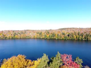 Land for sale in Gore, Laurentides, Chemin  Braemar, 18809434 - Centris.ca