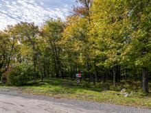 Terrain à vendre à Sainte-Anne-des-Lacs, Laurentides, Chemin du Sommet, 21047540 - Centris