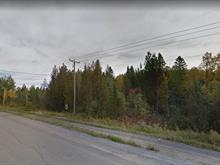 Terrain à vendre à Larouche, Saguenay/Lac-Saint-Jean, 740, Route des Fondateurs, 23562710 - Centris.ca