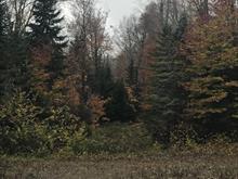 Terrain à vendre à Notre-Dame-de-la-Merci, Lanaudière, Chemin des Merisiers, 25497394 - Centris.ca